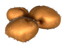 Three Brown potato covered with waterdrops. Foods and Dishes Ser Stock Photos