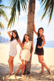 Three brunette slim girls barefoot stand on beach Stock Image