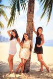 three brunette slim girls barefoot stand on beach Stock Image