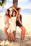 Three brunette slim girls lean on palm on beach. Three brunette slim girls in short frocks lean on palm tree and smile on sand beach against resort city Stock Photography