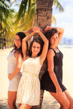 Three brunette slim girls lean on palm on beach Royalty Free Stock Image