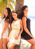 Three brunette slim girls lean on palm on beach Royalty Free Stock Photography