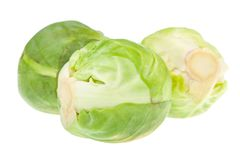 Three brussels sprouts Stock Image