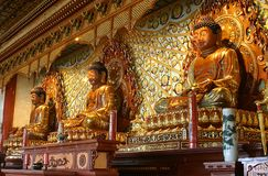 Three Buddha in Buddhist temple. Thee Golden Buddha in Buddhist temple royalty free stock images