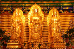 Three Buddha images. Stock Photos