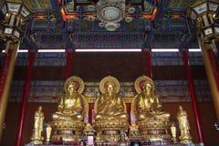 Three buddha Stock Images