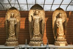 Three Buddhas on Dais Stock Images