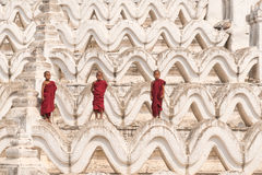 Three Buddhist novices Stock Photography