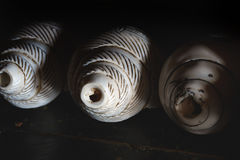 Three Buddhist ritual ancient shells for conducting Tibetan tantric services in the monastery, Tibet, the Himalayas. Royalty Free Stock Photos