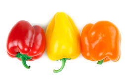 Three Bulgarian pepper Stock Image