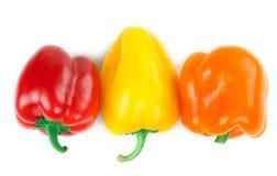 Three Bulgarian pepper Stock Image