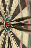 Three Bulls Eye Royalty Free Stock Photography