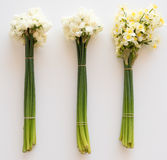 Three bunches of flowers from above Royalty Free Stock Image