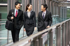 Three Business Colleagues Having Discussion stock photo