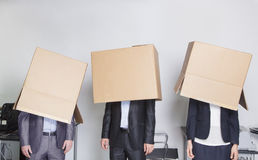 Three business people with boxes over their heads in an office Royalty Free Stock Images