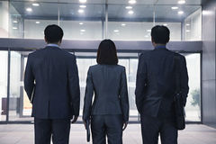 Three business people standing in a row, rear view Stock Photo
