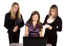 Three business women working Stock Photos
