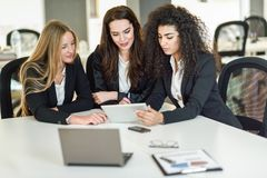 Three businesswomen working together in a modern office Stock Photography