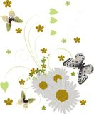 Three butterflies and chamomiles on white Stock Photo