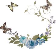 Three butterflies and flowers Royalty Free Stock Photography