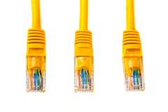 Three cable heads into head rj45 of an ethernet wire cable or yellow patch-cord with twisted pair.,network,RJ45,plug. Isolated. Royalty Free Stock Photo