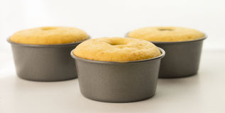 Three Cakes in Tins. Three orange cakes cooling in their tins stock photography