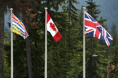 Three Canadian Flags Royalty Free Stock Images