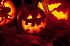 Three candle lit Halloween pumpkins Stock Image
