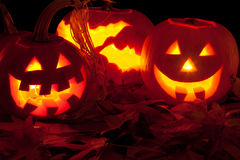Three candle lit Halloween pumpkins Stock Images