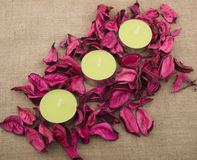 Three candles and pink potpourri Royalty Free Stock Photography