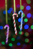 Three candy cane ornaments with defocused lights Royalty Free Stock Photography