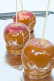 Three caramel apples Royalty Free Stock Photo