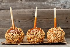 Three caramel apples with nuts against rustic wood Royalty Free Stock Photo