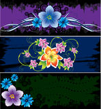 Three cards with abstract flowers Stock Photos