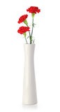 Three carnation flowers in white vase Stock Photo