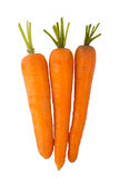 Three carrots isolated on a white background Royalty Free Stock Images