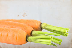 Three carrots on old paper Royalty Free Stock Photo