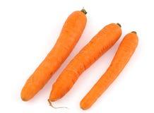Three carrots on white background.jpg Royalty Free Stock Photo