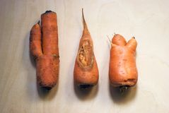 Three carrots on wooden background Royalty Free Stock Images