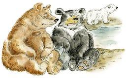 Three cartoon bears. Illustration of three friendly cartoon bears: brown american, grizzly and polar bear Stock Photo