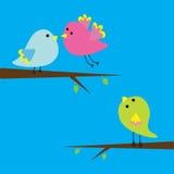 Three cartoon birds. Card. Royalty Free Stock Photo