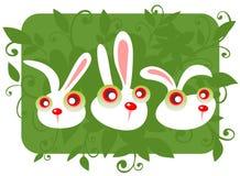 Three cartoon rabbits Royalty Free Stock Photography
