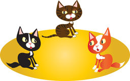 Three cats in a circle Stock Photo