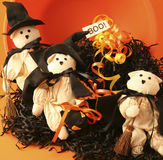 Three Cats Dressed as Witches. 3 small cat dolls dressed as witches with black raffia, ribbon and a boo sign stock images