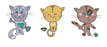 Three cats. Smileys different emotions Royalty Free Stock Photos