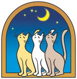 Three cats by the window, moon Stock Photo