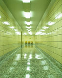 Three Chairs at the End of Shiny Hallway Royalty Free Stock Photography