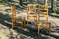 Three chairs in the woods. Three lonely standing chairs in a pine forest on a sunny day Stock Photos
