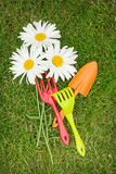 Three chamomile flowers and garden tools over green grass Royalty Free Stock Photo