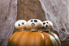 Three champignons on pumpkin top Royalty Free Stock Photography